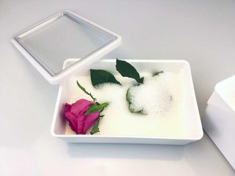 letto_silocage_essicazione_fiore