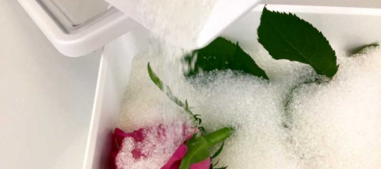 Dried flowers with silica gel, a small guide.